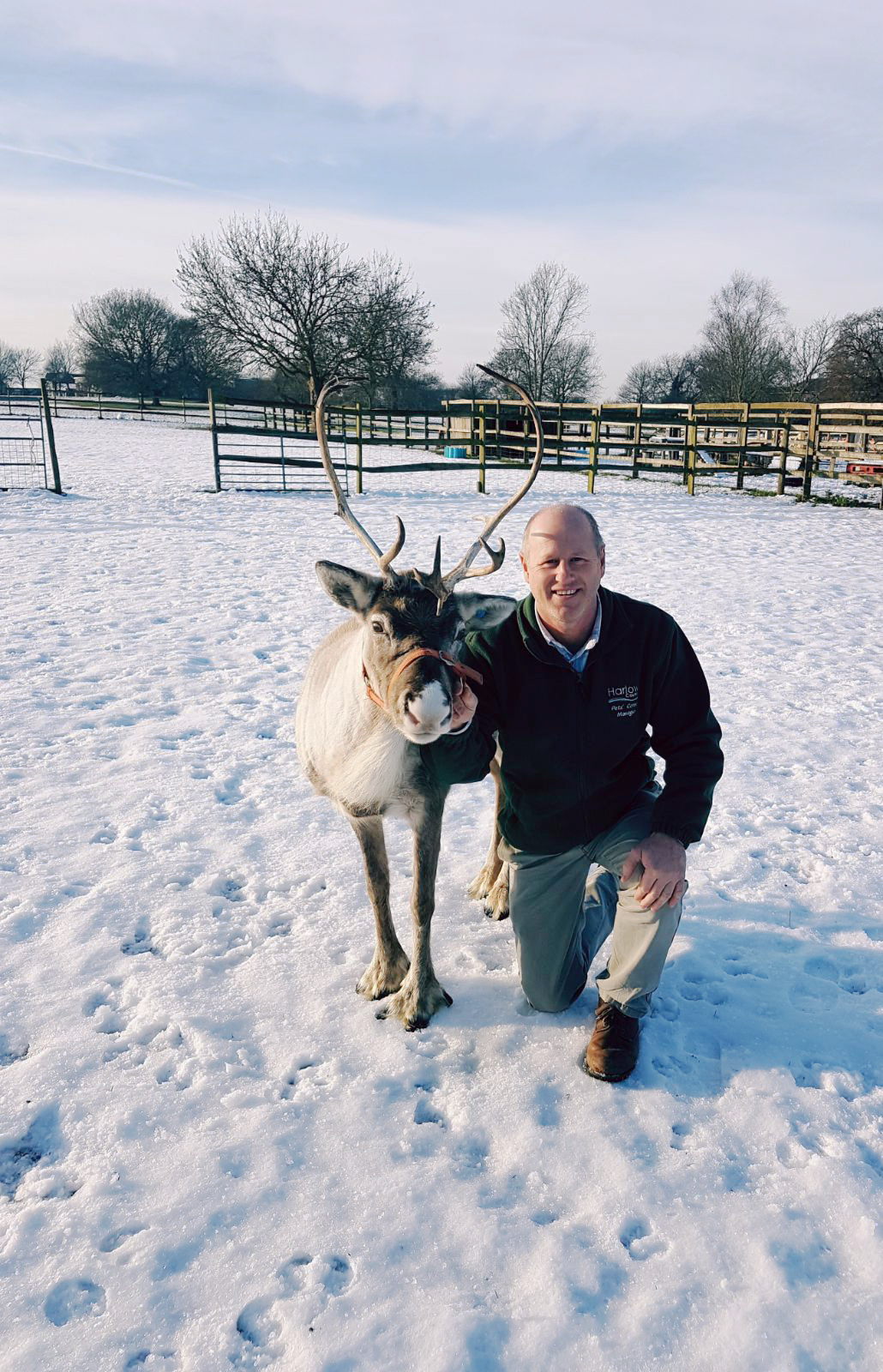 Justin Hopwood with reindeer
